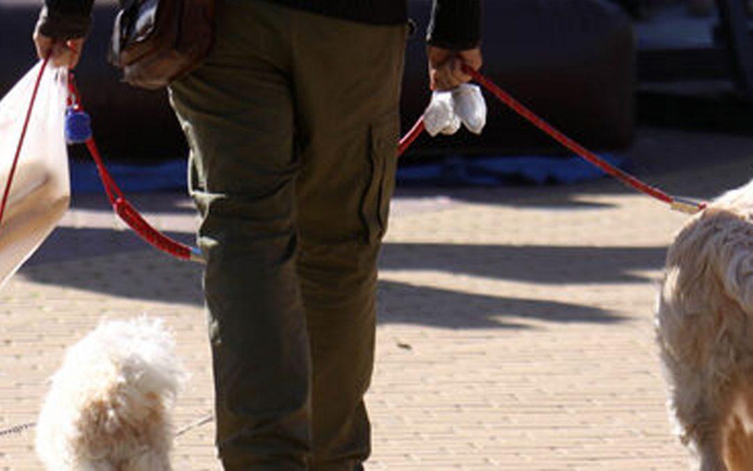 Rafal aprueba la ordenanza que regulariza la tenencia de animales y garantiza la seguridad e higiene públicas