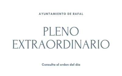 Pleno Extraordinario en el Ayuntamiento de Rafal, 15 de enero de 2021